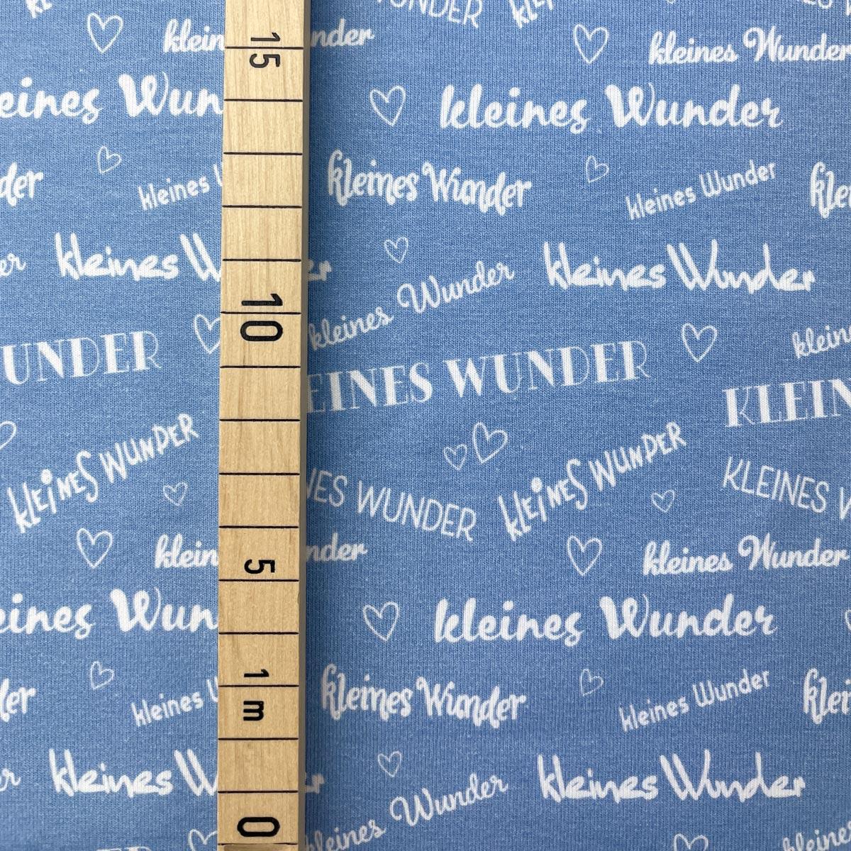 "Jersey ""kleines Wunder"" babyblau Meterware"