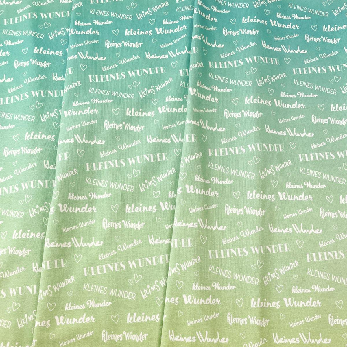"""Jersey """"kleines Wunder"""" minted & green Meterware"""